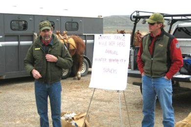 Volunteers needed for 20th annual deer mortality surveys