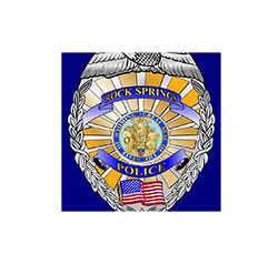 Suspect arrested during stolen vehicle and hit and run investigation