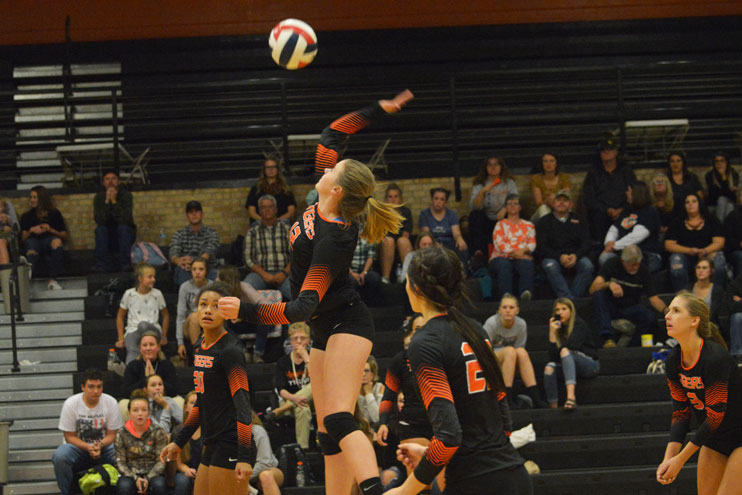 Lady Tigers Play Tough, but Lose to Red Devils in 5 Games