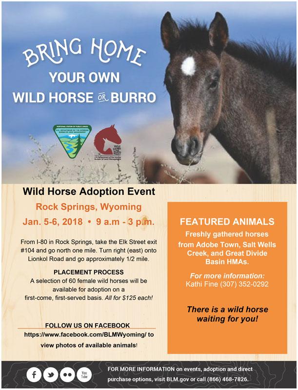 BLM Wild Horse Adoption Event January 5-6