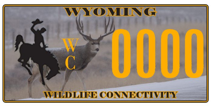 HB 39 (Wildlife License Plate Bill) Passes The House