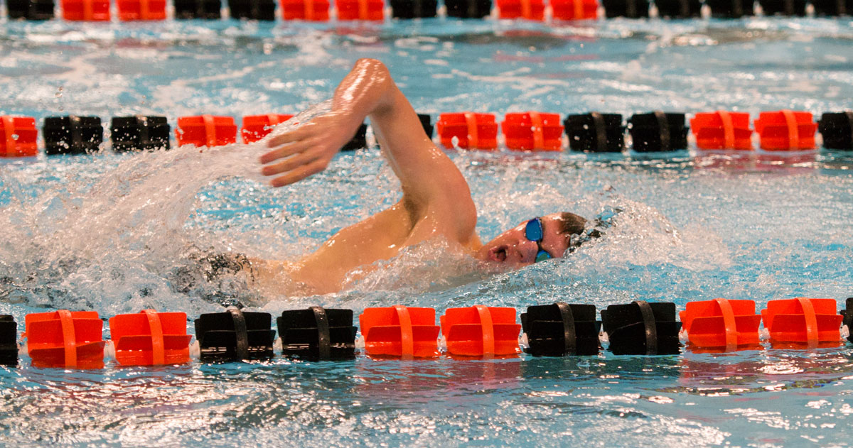 Tigers Host Last Chance Swim and Dive Meet
