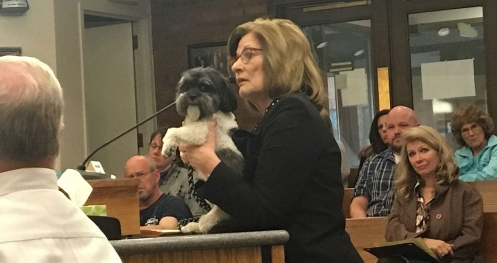 Community Comes Out in Support of Ordinance Prohibiting Commercial Sale of Pets