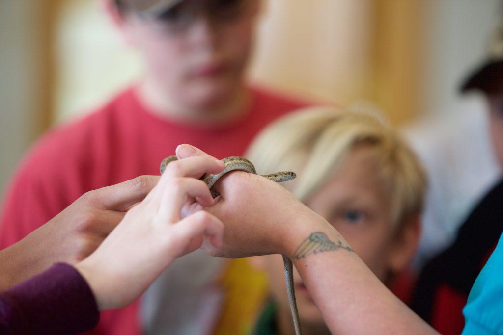 Crayfish, Snakes, & Leeches: Monroe Kids Get Full Seedskadee Experience