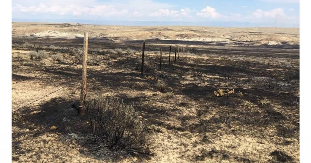 Terek Fire Mapped at 42,267 Acres and 85% Contained