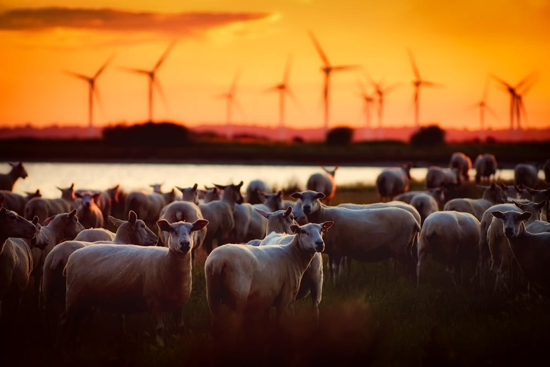 PacifiCorp Moves Forward With Major Wind and Transmission Expansion Plan