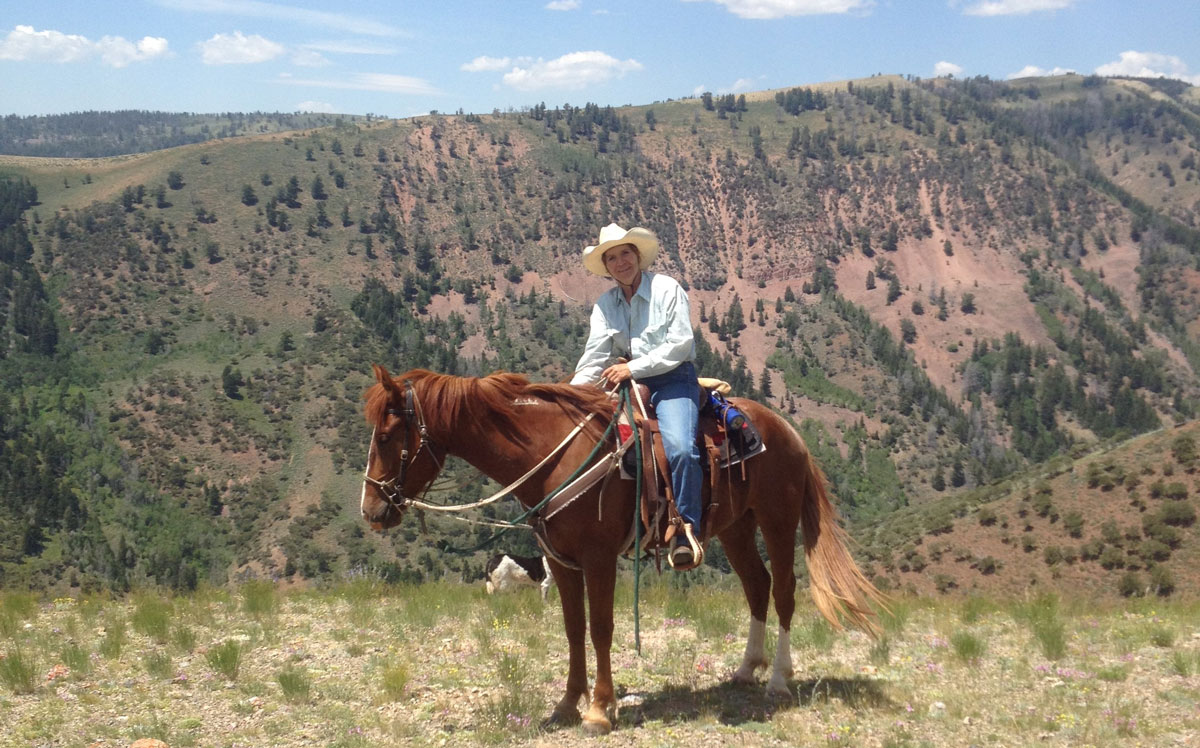 Adopt a Gentled Wild Horse or Burro at the BLM–Wyoming Honor Farm Fall Adoption