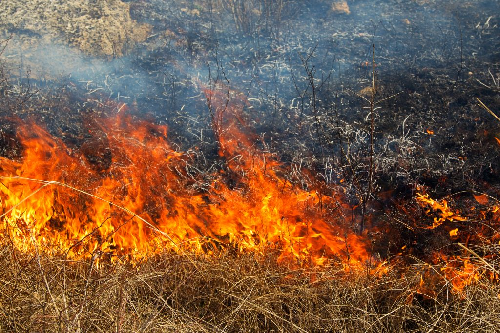 Three Homes Destroyed in Platte County Britania Fire