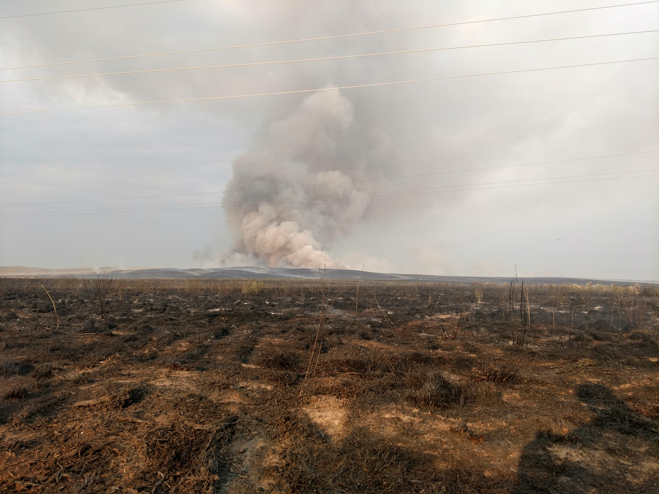 BLM Fighting North Eden Fire Near Cokeville