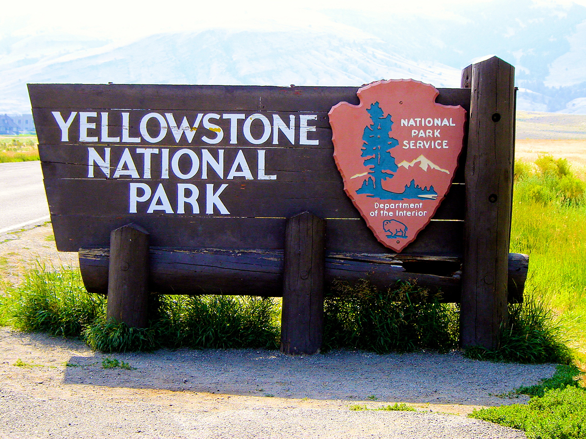 UPDATE: Boy Injured By Bear Near Old Faithful In Recovery