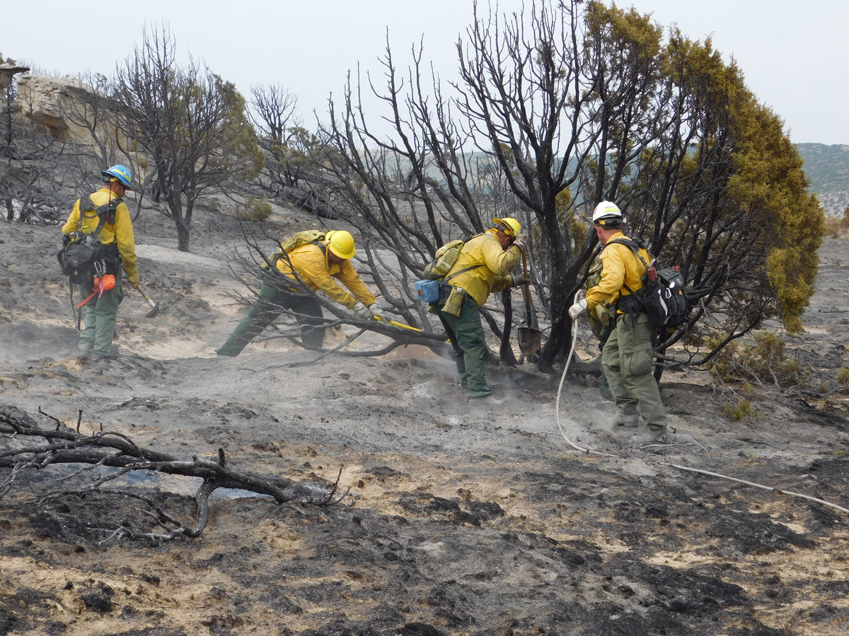 UPDATE: Laney Rim Fire is 85 Percent Contained