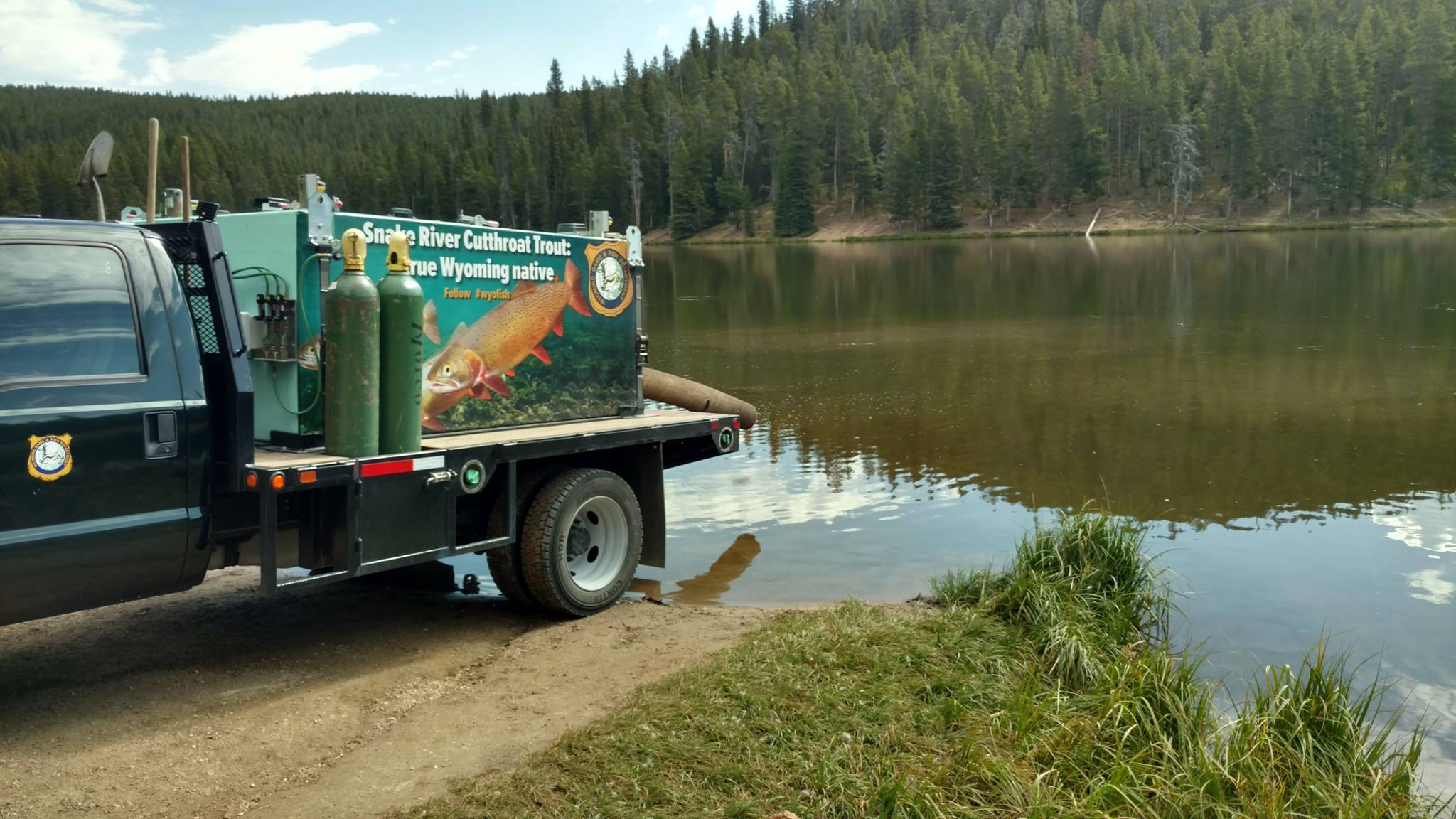 WY Game & Fish Plans Dollar Lake Restoration: Has Become 99% White Suckers