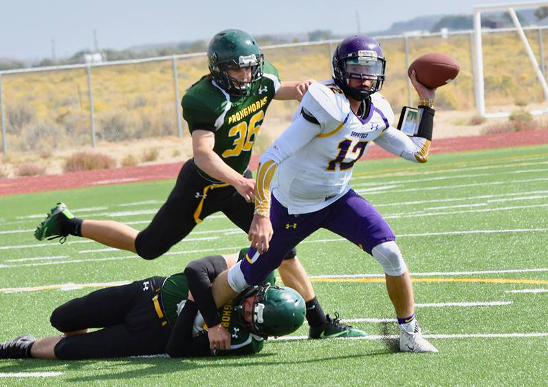 Pronghorns Shine in Homecoming Game Against Panthers