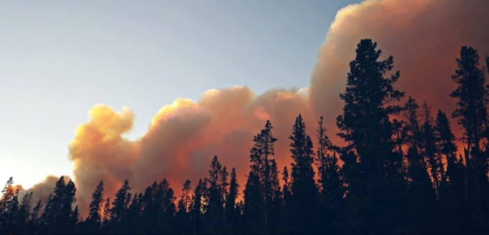 Red Cross Opens Evacuation Center in Pinedale