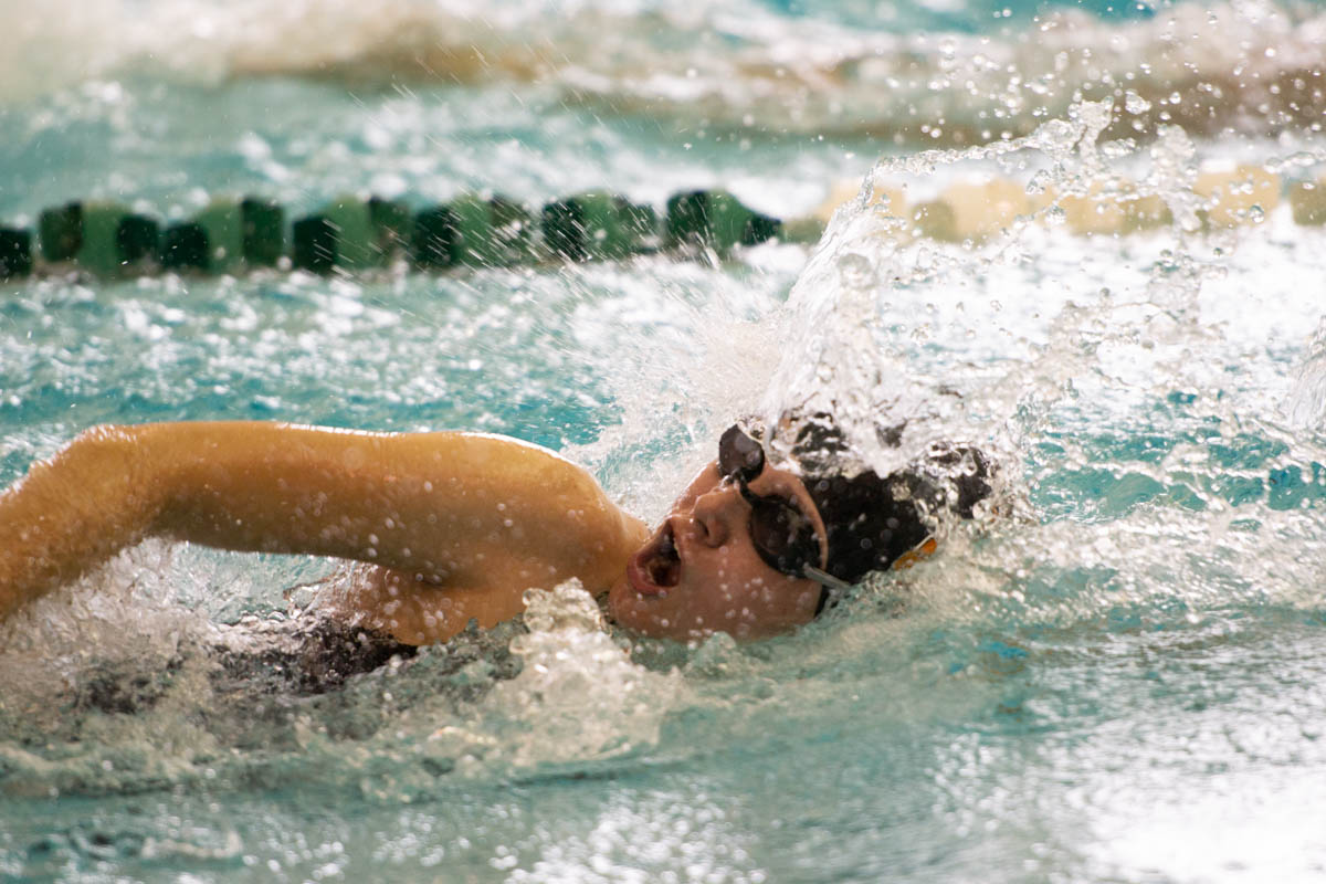 Lady Tigers Swimming and Diving Place Second in Evanston