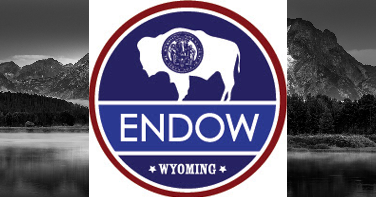 ENDOW Executive Council Meets to Detail Go-Forward Strategy