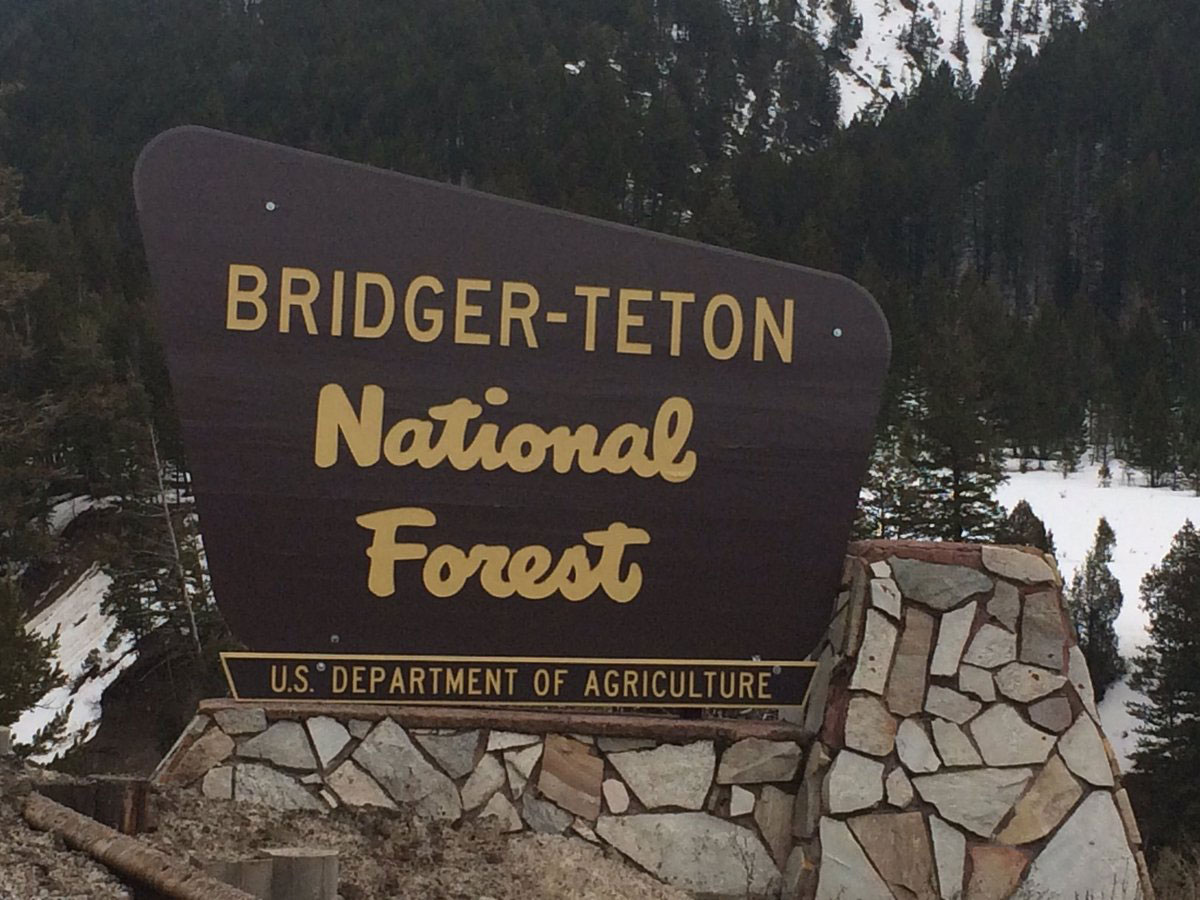 Blind Bull Road Reopens on the Greys River Ranger District