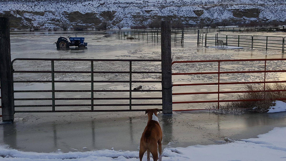 Ice Jam in the Green River Causes Concern Among Jamestown Residents