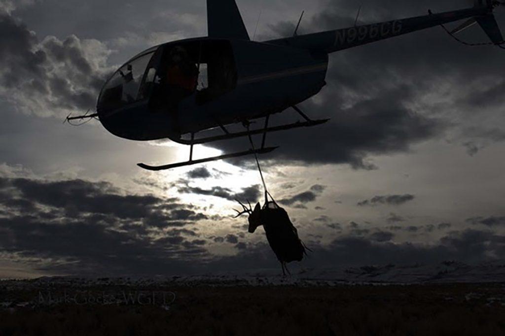 Wyoming Range Mule Deer Research Expanded