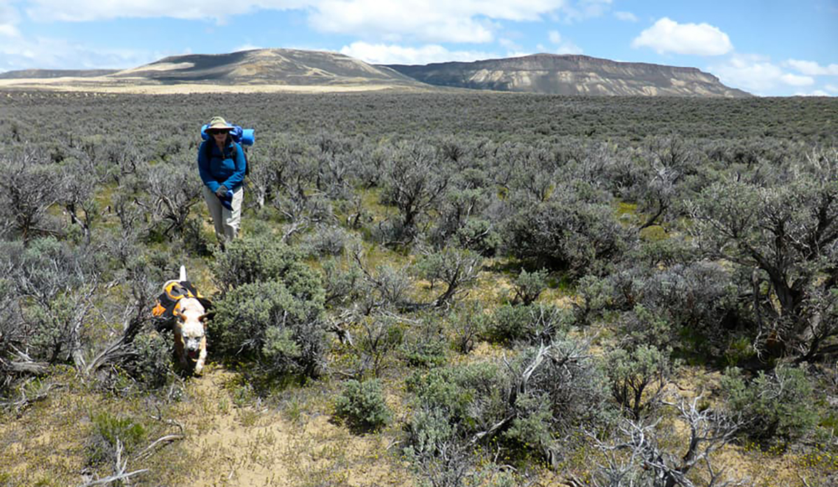 BLM Rock Springs to Temporarily Close Steamboat Mountain Area Roads