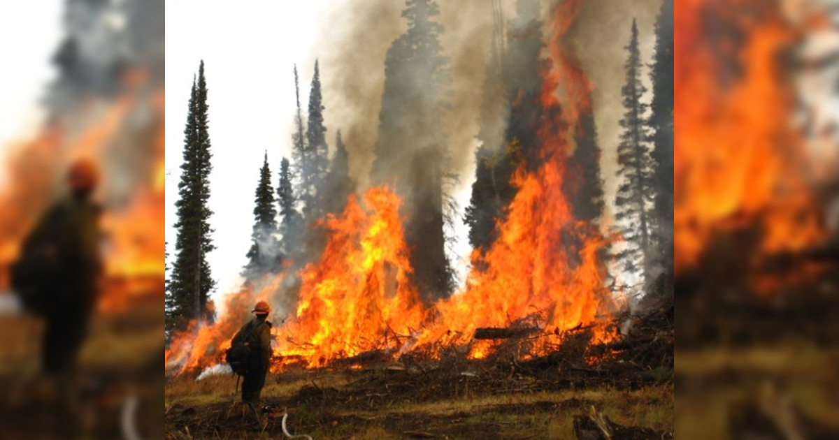 BLM to Conduct Prescribed Burns in Sublette, Lincoln Counties