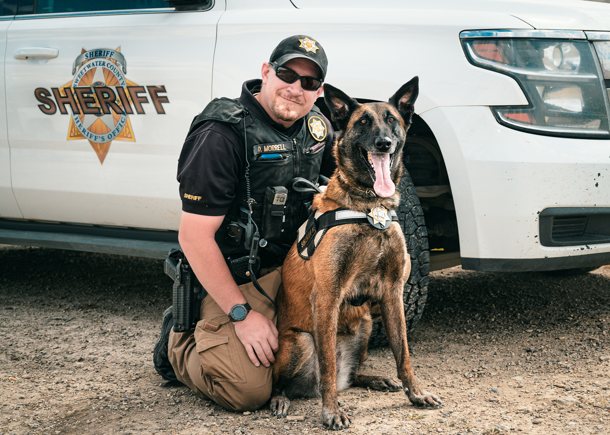 Sheriff's Office K-9 Team Tracks and Rescues Missing 4-Year-Old