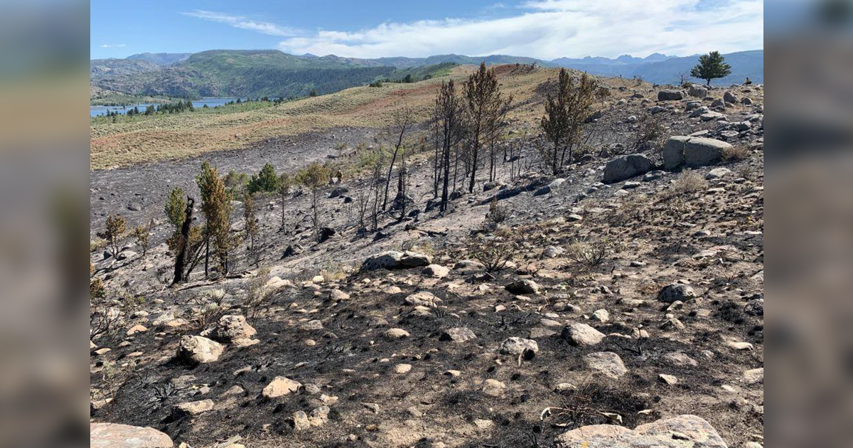 Tannerite Fire Near Boulder Lake 70% Contained as of Noon Today