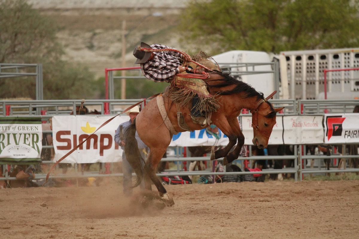 Overland Stage Stampede Rodeo Makes Over $8,000 in Ticket Sales
