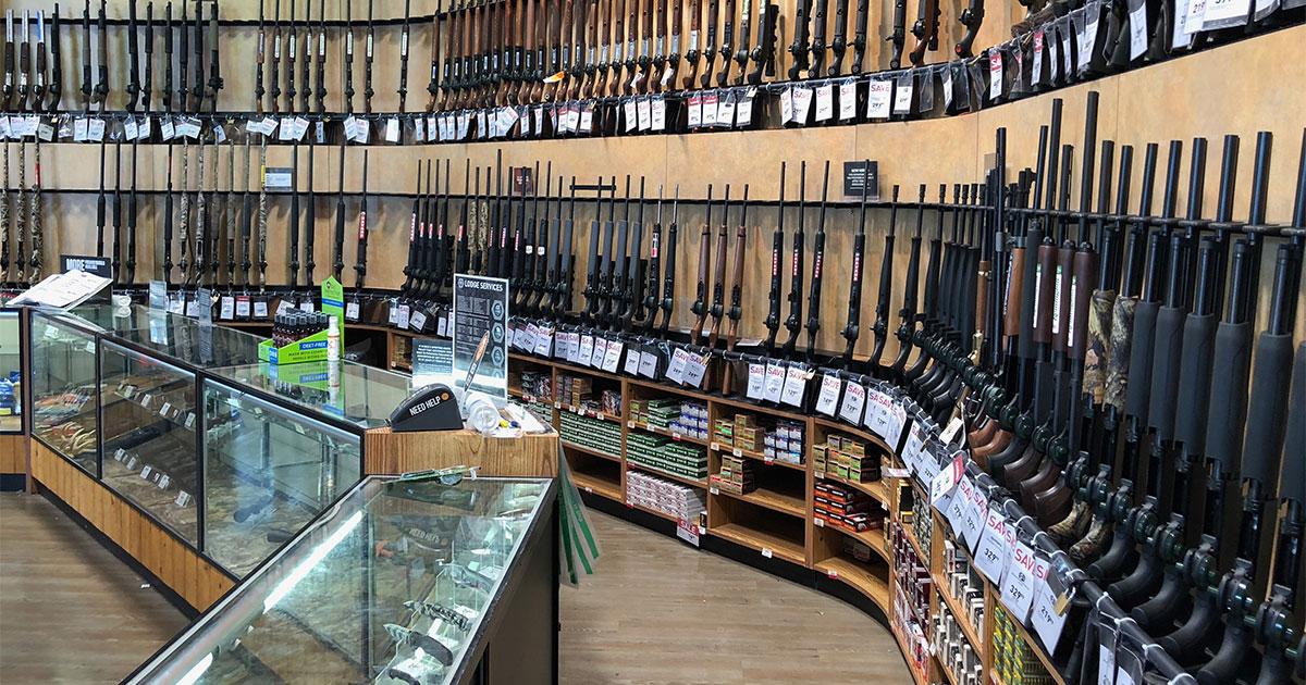 Judiciary Committee Kills Potential Gun Legislation
