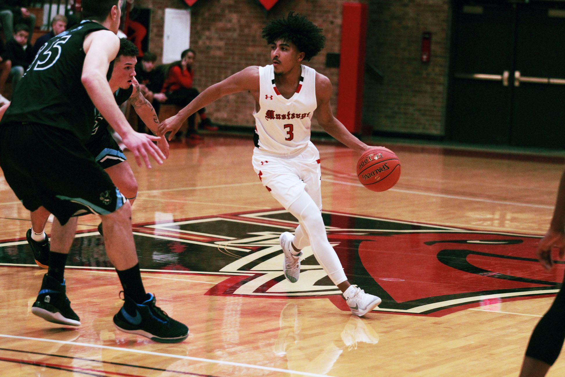 New Polls Rank Mustangs Basketball 15th in Nation