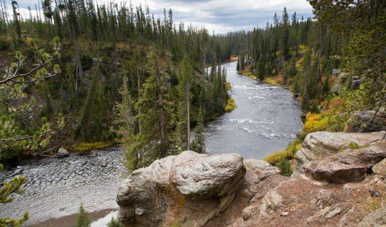 Yellowstone and Grand Teton National Parks Close