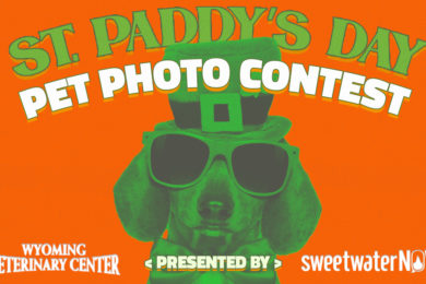 St. Paddy's Day Pet Photo Contest