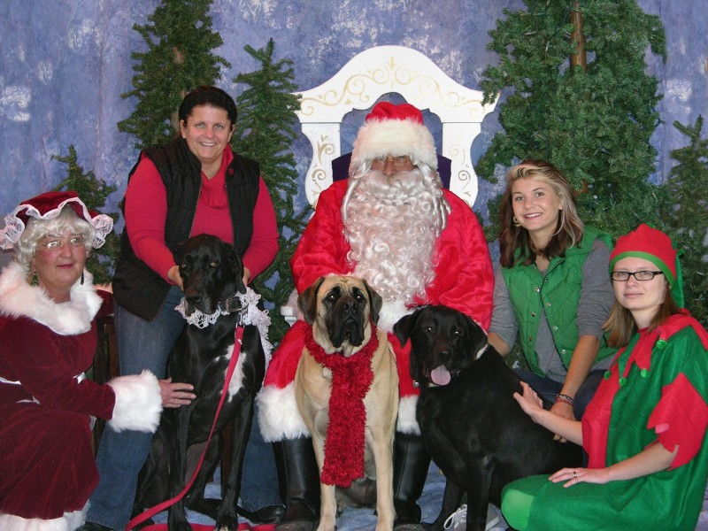 It's time for Santa Paws pet lovers
