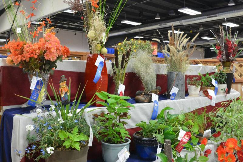Wyoming Big Show: Field Crops and Floriculture Results