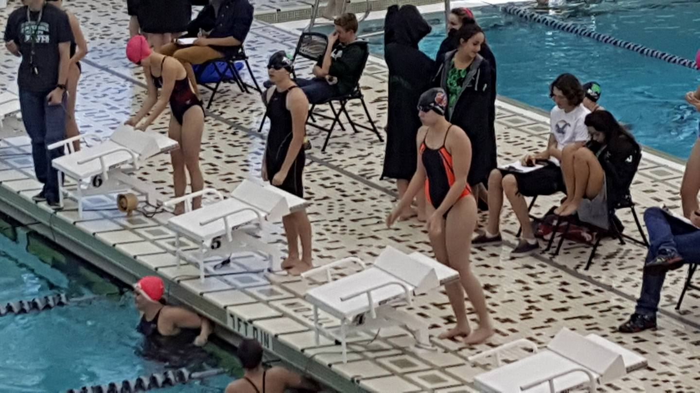 Local Swimmers Earn All-State Honors