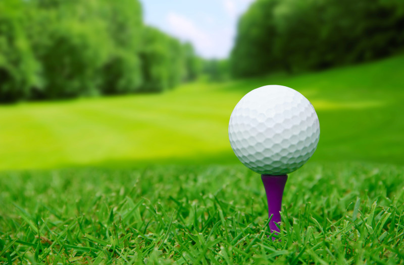 Riverton Invitational Golf Tournament Boy's Results