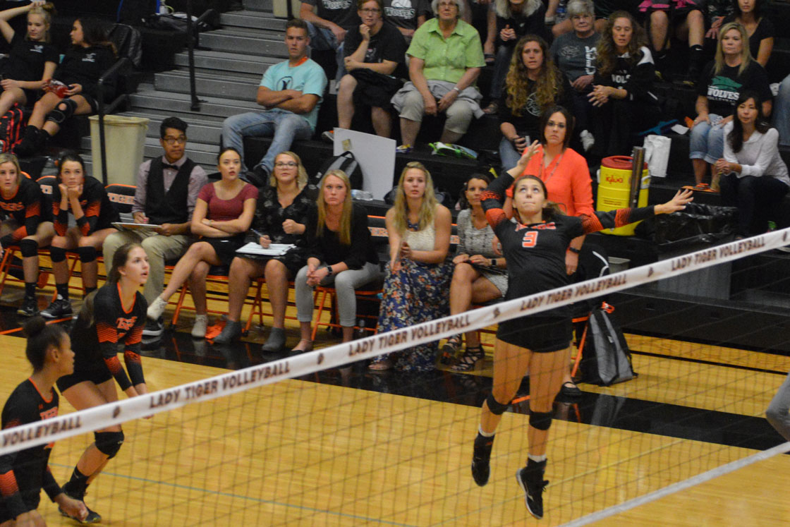 Lady Tigers Continue Growth in Casper
