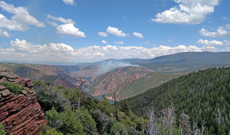 Prescribed Burns Continue in Ashley National Forest