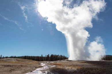 Woman Falls, Burned at Old Faithful Feature After Illegally Entering YNP