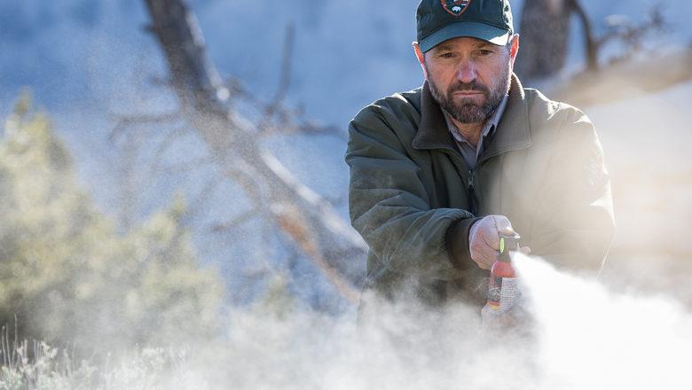 Yellowstone Promotes Bear Spray