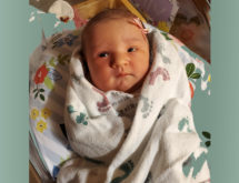 Birth Announcements: Molly Anne Koritnik