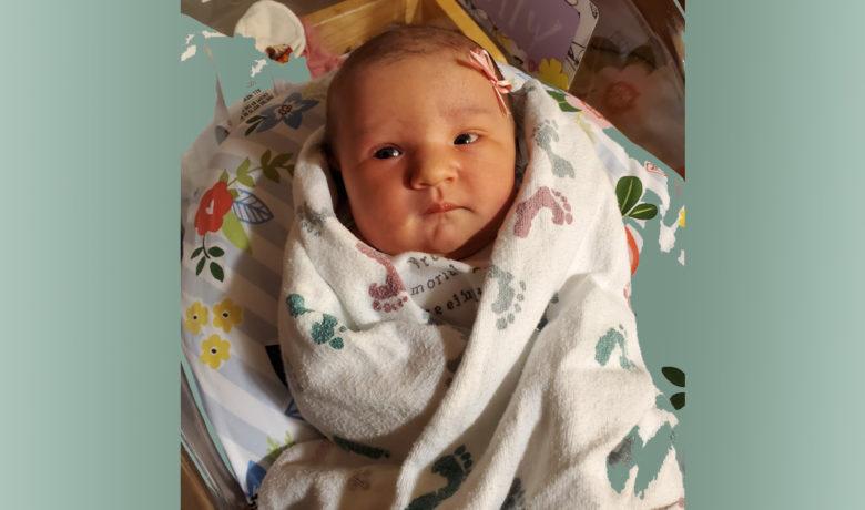 Birth Announcements: Molly Anne Koritnik