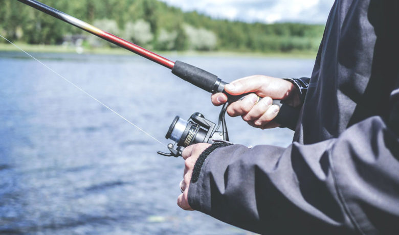 Successful Kokanee Captive Broodstock Program Launched by Game and Fish
