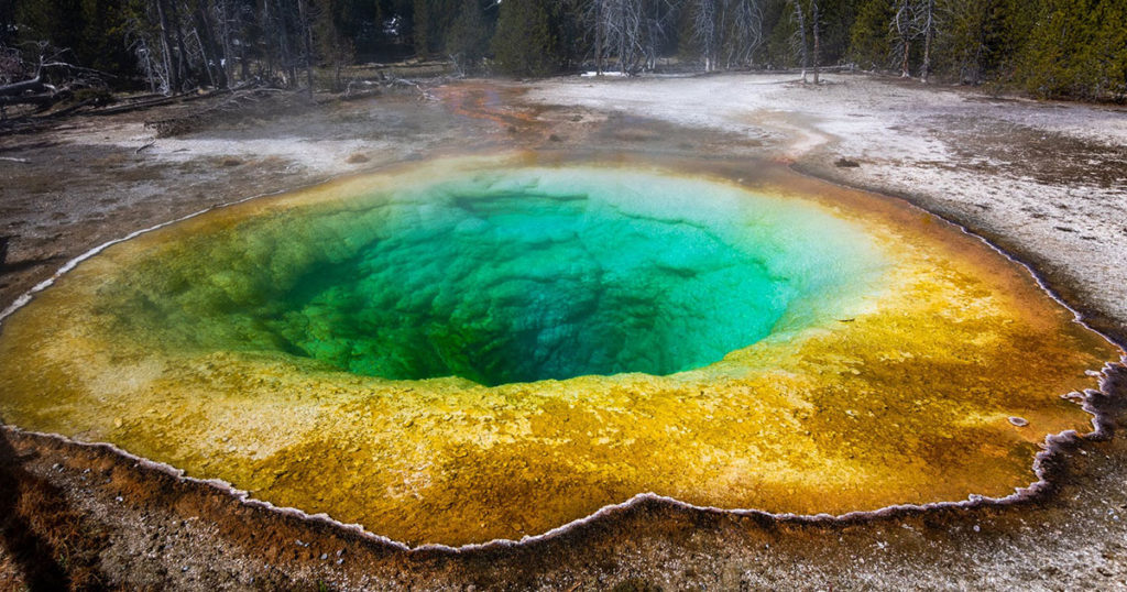 Yellowstone National Park Opens All Entrances Today