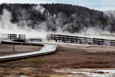 Two Women Sentenced for Yellowstone National Park Violations