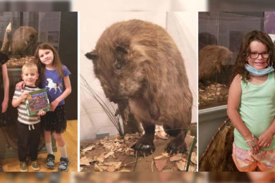 Community Kids Name the Sweetwater County Museum Beaver