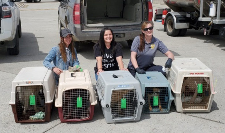 Green River Animal Control, Red Desert Humane Society Work Together to Rescue Animals
