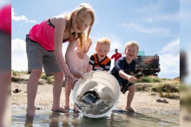 6,000 Jumbo Channel Catfish Stocked in 19 Community Fishing Ponds