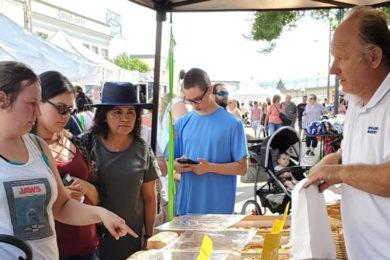 Catch the Main Street Farmer's Market