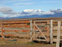Reclaiming Wyoming's Future Webinar Series Continues